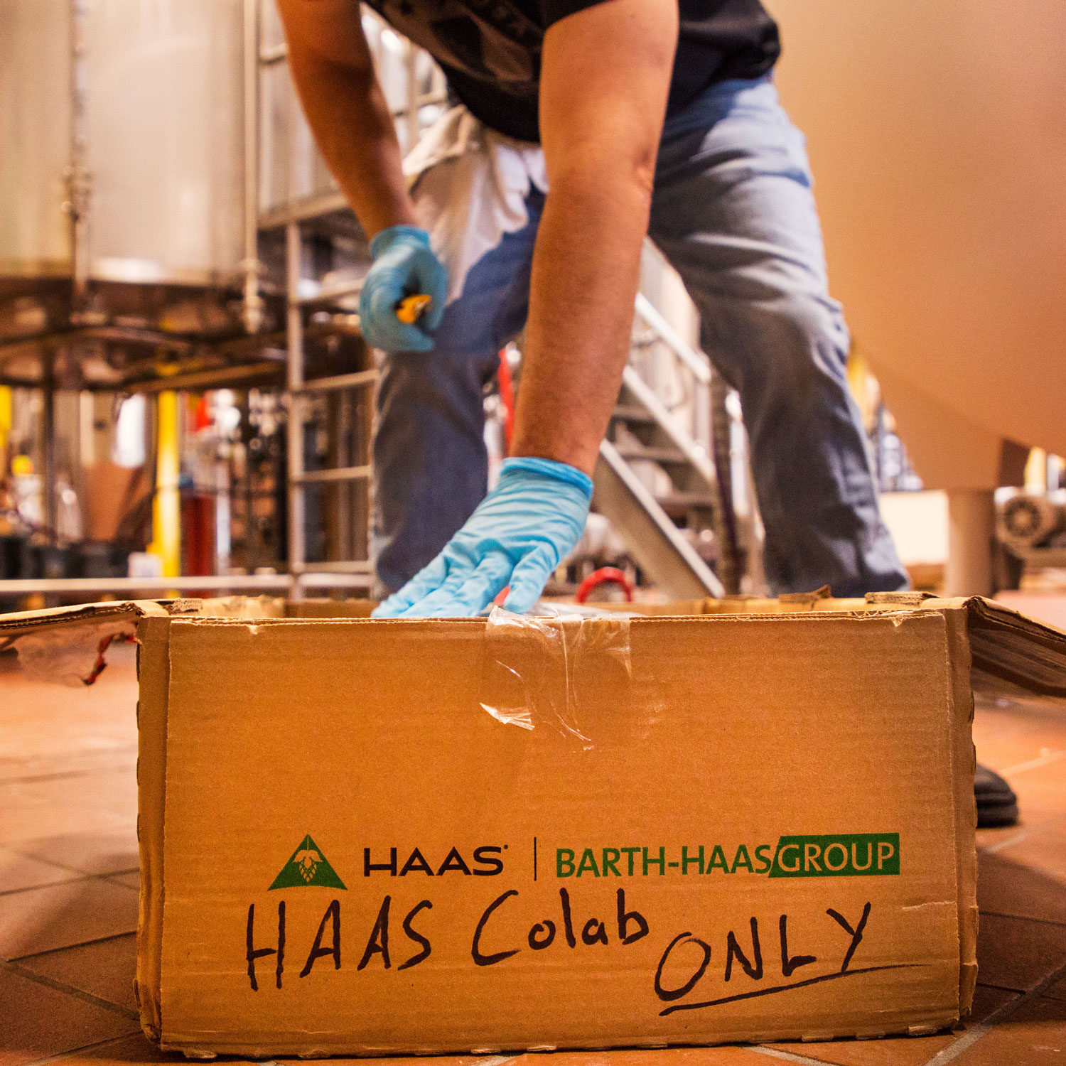 HAAS Colab
