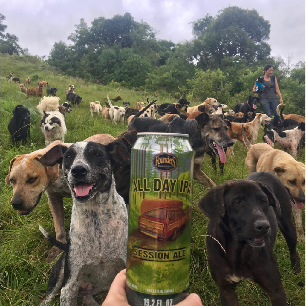 Founders All Day IPA with several dogs