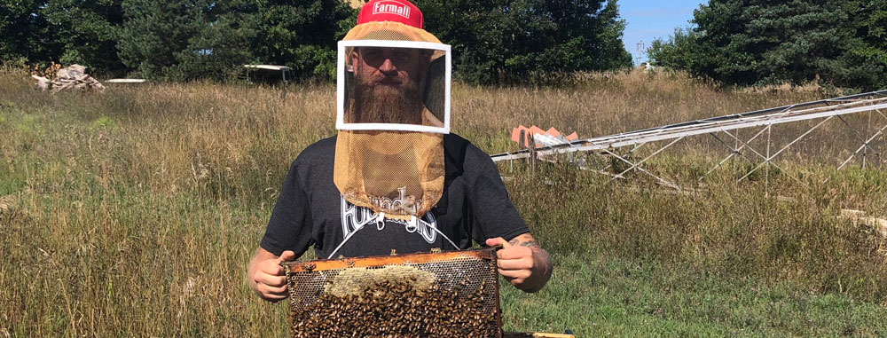 Bee keeper holding a box of bees in a field