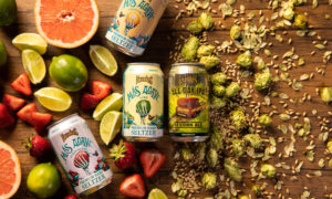 beer versus seltzer with fruit and hops/grains